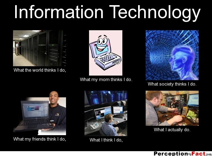 Information Technology  What people think I do what I really do  Perception Vs Fact