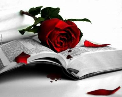 red rose blood book
