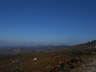Landscape near Merujal