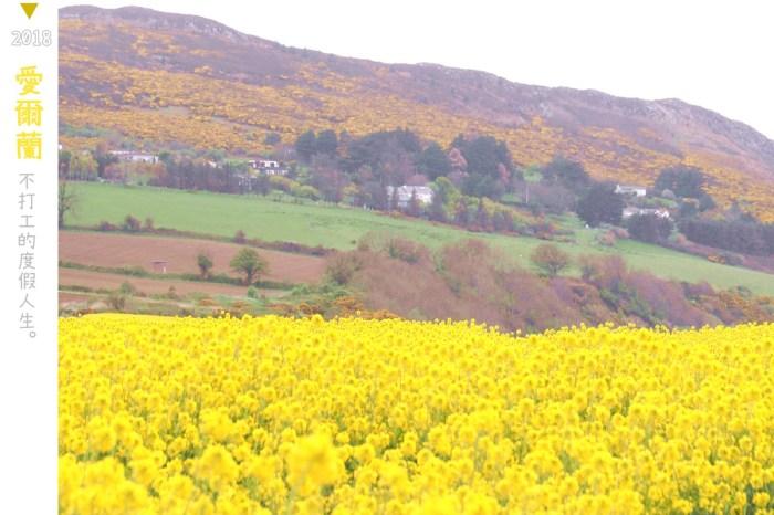 愛爾蘭|IG打卡秘境景點.距離都柏林僅一小時的Greystones花田!