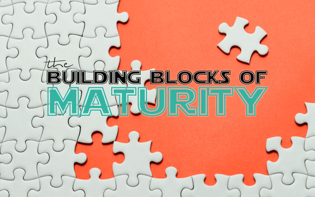 the building blocks of maturity | jay fesperman (3/3)