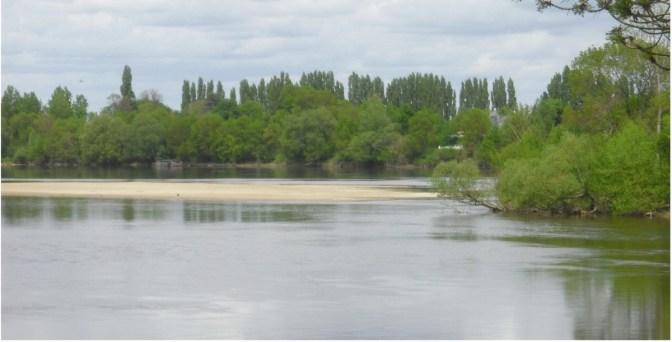 La Loire à Chênehutte