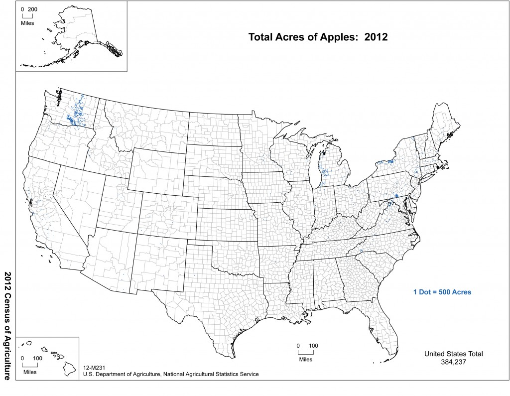Where are Apples Grown in the United States?