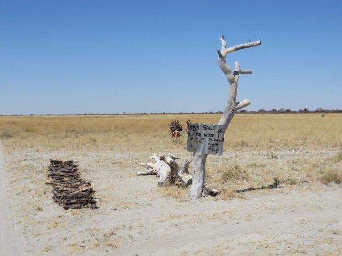 Verlaten verkooppunt van hout bij een dode boom