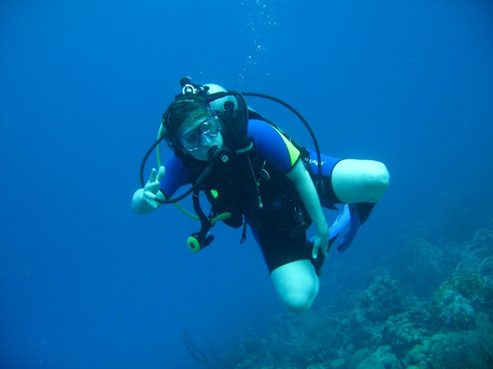 duiker bonaire