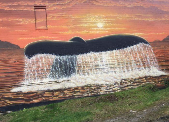 muurschildering walvisstaart prince rupert
