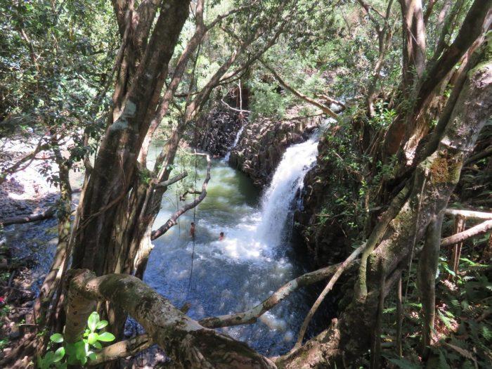 zwemmen bij Twin falls