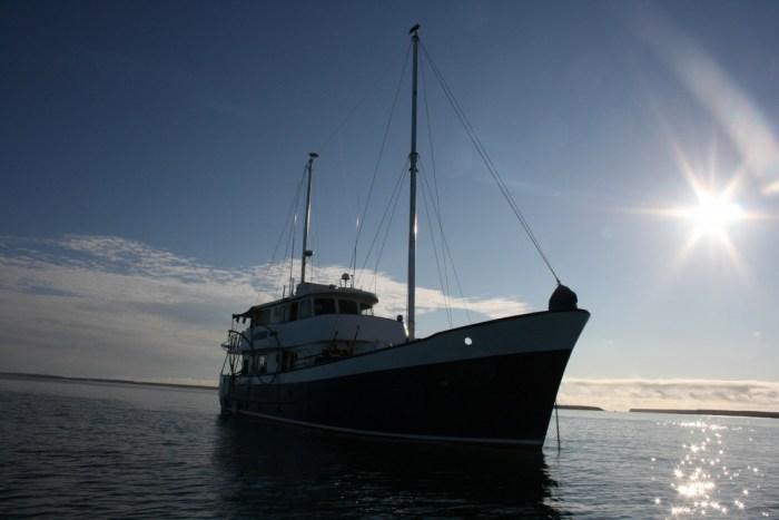 cruise langs de Galapagos Eilnden