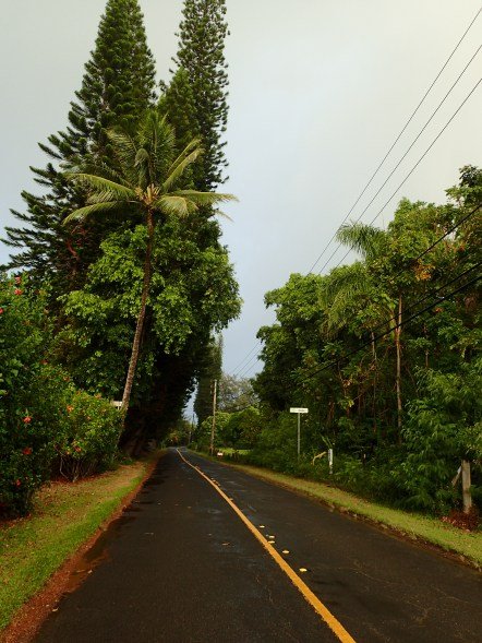 Looking down the road before the rain lets loose