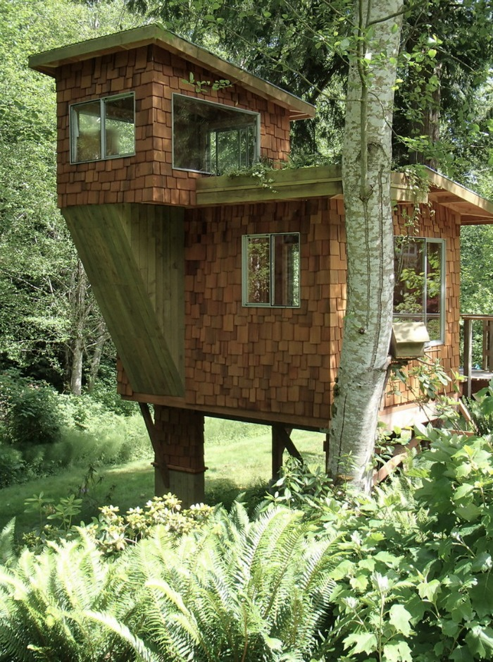 Tree House 24
