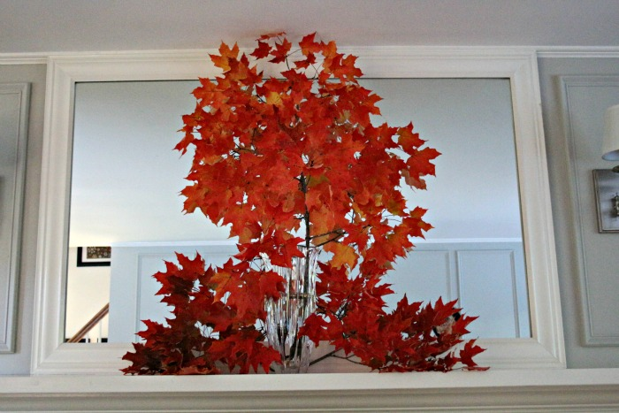Fall Leaves Focal Point