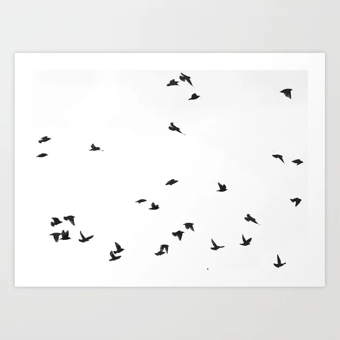 Sunday's Society6 | Birds flying high art print