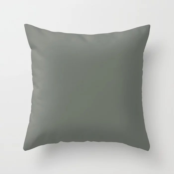 Rich and Moody Green Solid Color Pairs To Pratt & Lambert 2021 Color of the Year Contemplative 420F Throw Pillow