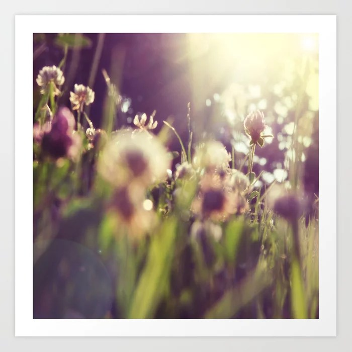 Sunday's Society6 | Sprint art print, flowers in the sun