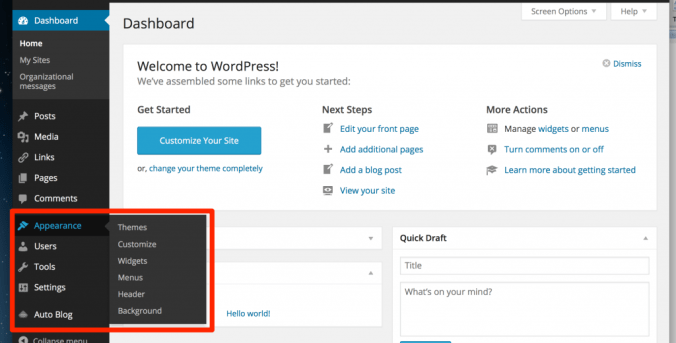 Screenshot of the Appearance menu in WordPress