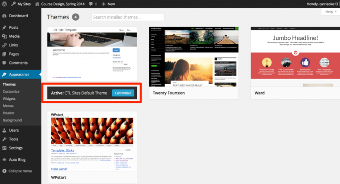 Screenshot highlighting the Active theme on the Themes page
