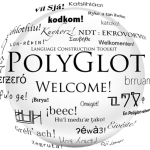 Are You Agile Enough for Polyglot Programming?
