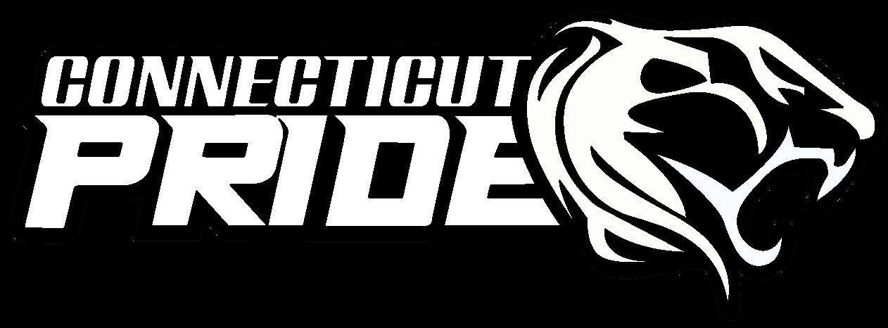 Girls Fastpitch Travel Softball