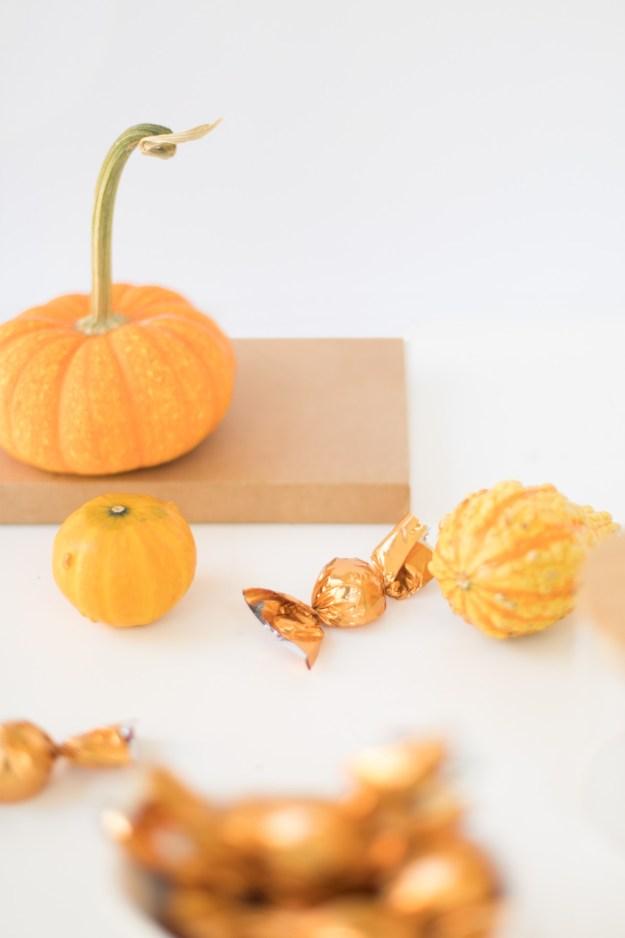 Thanksgiving Picks Trader Joes