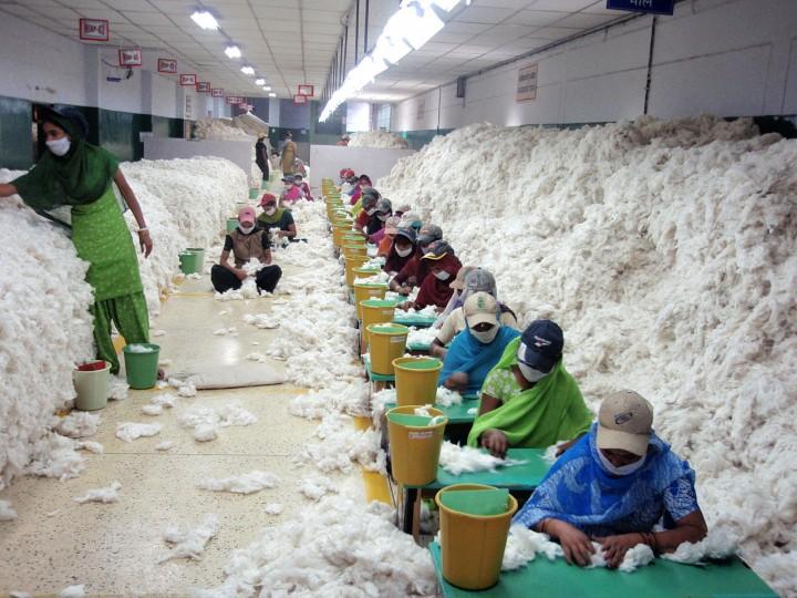 <p>Descontaminación de algodón en una hilandería de India</p>