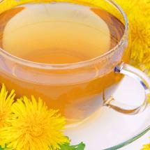 たんぽぽ茶は授乳・不妊対策でお悩みの方におすすめ!その効果・効能とは?