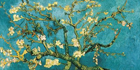 2VG051 - INCENT VAN GOGH - Mandorlo in fiore (detail)
