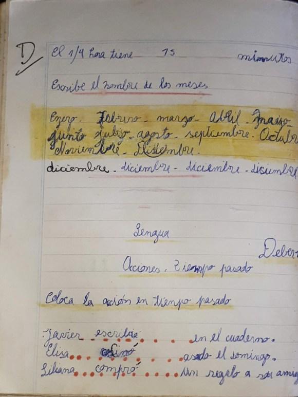 Javier escribía en el cuaderno.<br>Elisa cocinó asado el domingo.<br>Lali bailaba en un boliche.