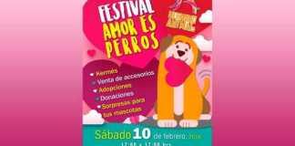 Festival-adopcion