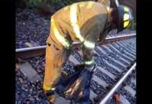 miembro amputado bombero tren