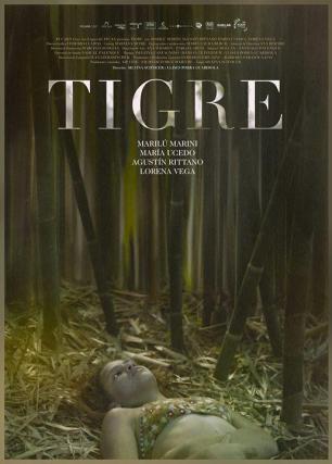 tigre-824511778-large