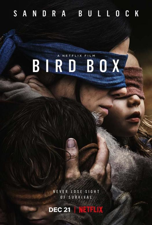 bird_box-860040347-large.jpg