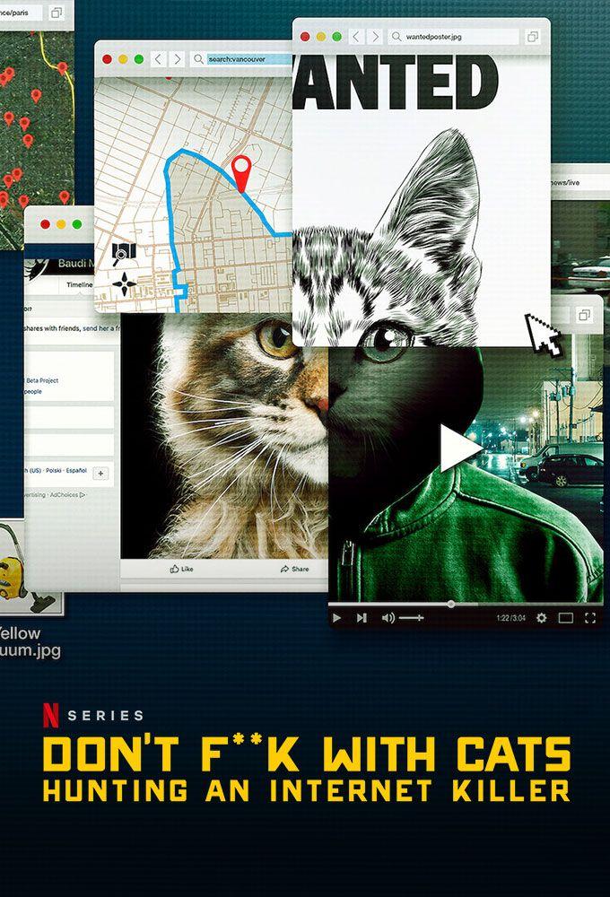 no te metas con los gatos