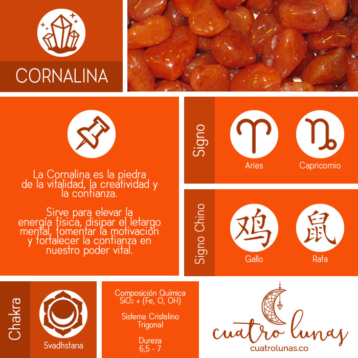 Infografia Cornalina