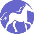 zodiaco chino caballo