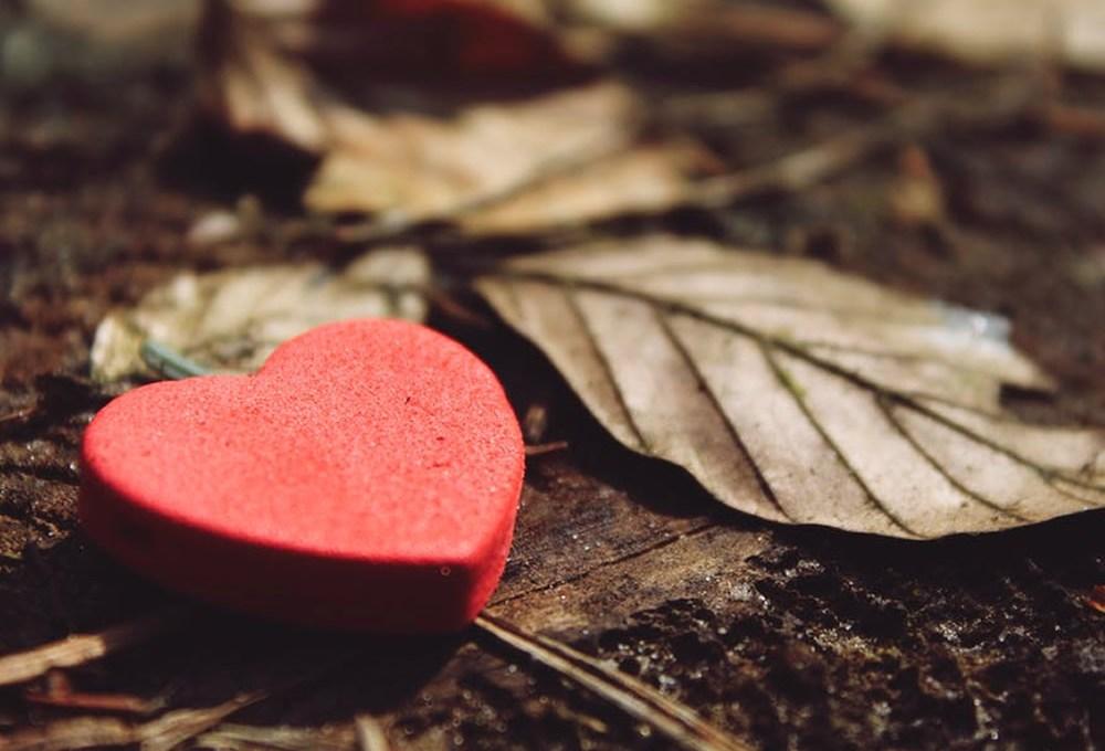 Siguiendo el camino del corazón