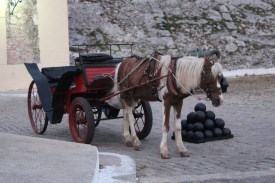 A horse and buggy inside Havana's 17th century Spanish fort, where we watched a cannon firing ceremony.