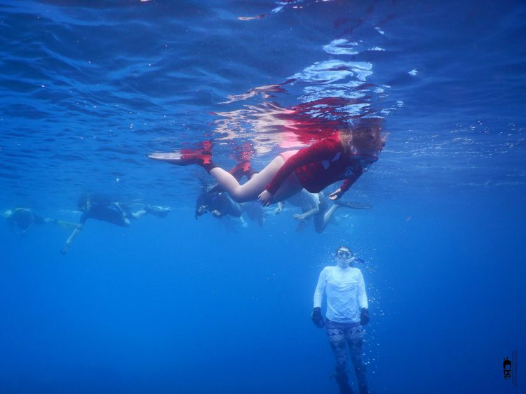 Snorkel en Punta Perdiz