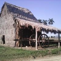 ¿El fósil de la cultura guajira?