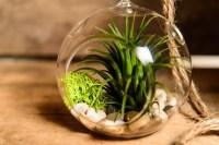 Cubicle Plants - Cubicle Decor Zone