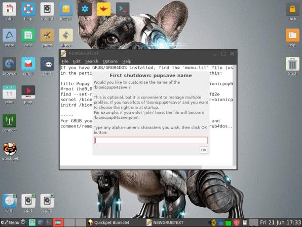 PuppyLinux VM 41