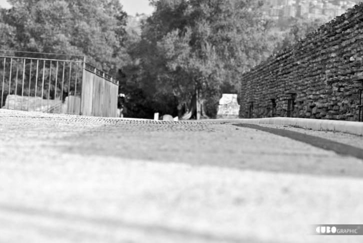 Giuseppe_Bucolo-Villa Adriana 2010
