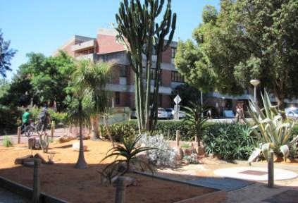 australia-perth-by-kirstin-bebell-university-grounds-2012-curtin-university