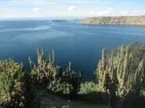 boliviags_by-lex-mobley-cactus-and-lake-2013