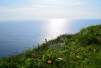 ireland-cliffs-of-moher-by-hannah-farrar-cliffs-of-moher-2-2014
