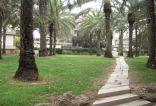 israel-tel-aviv-by-sarah-westmoreland-university-pathway-2010