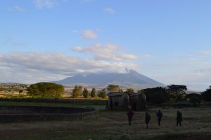 tanzaniags_by-laura-deluca-mountain-backdrop-2014
