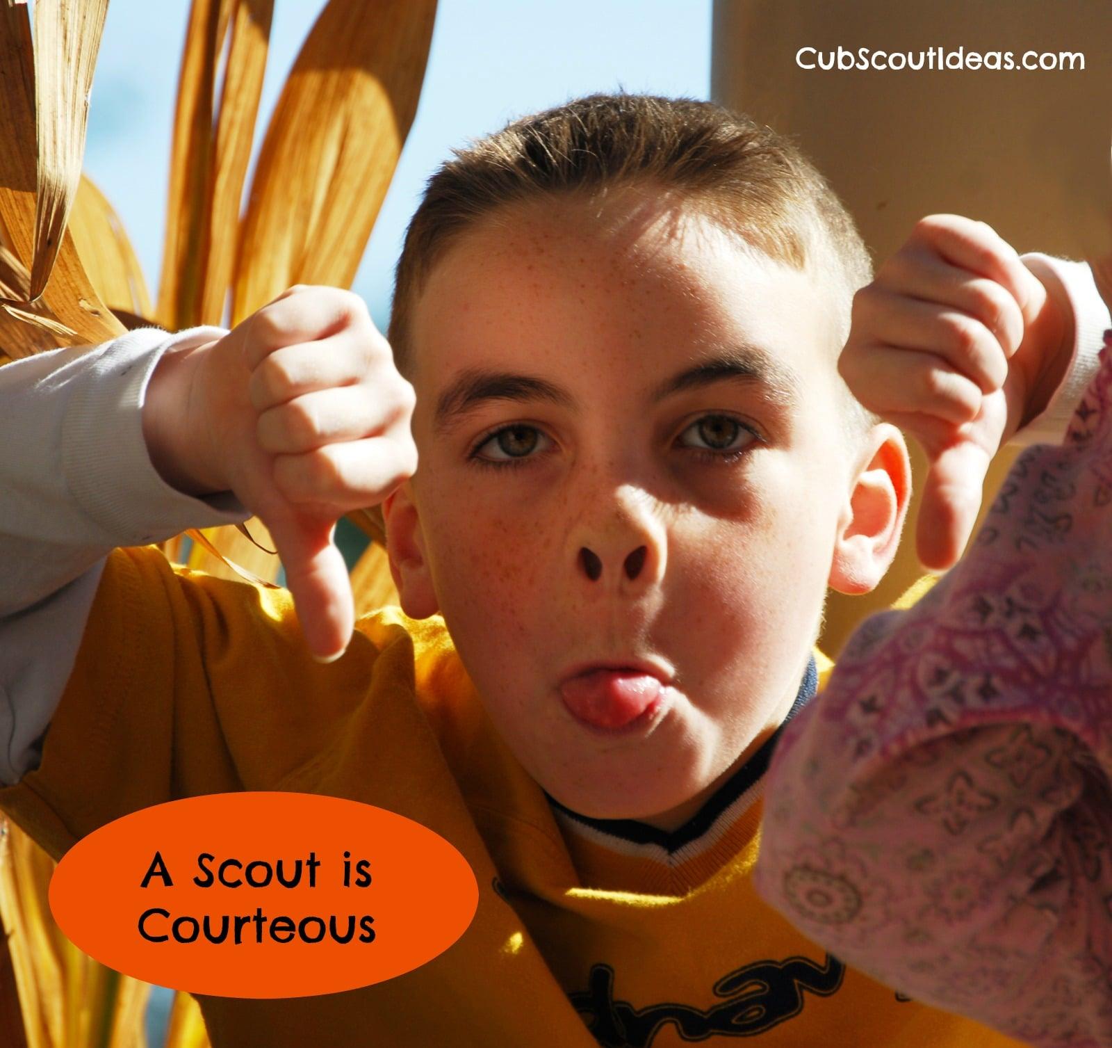 Cub Scouts Are Courteous