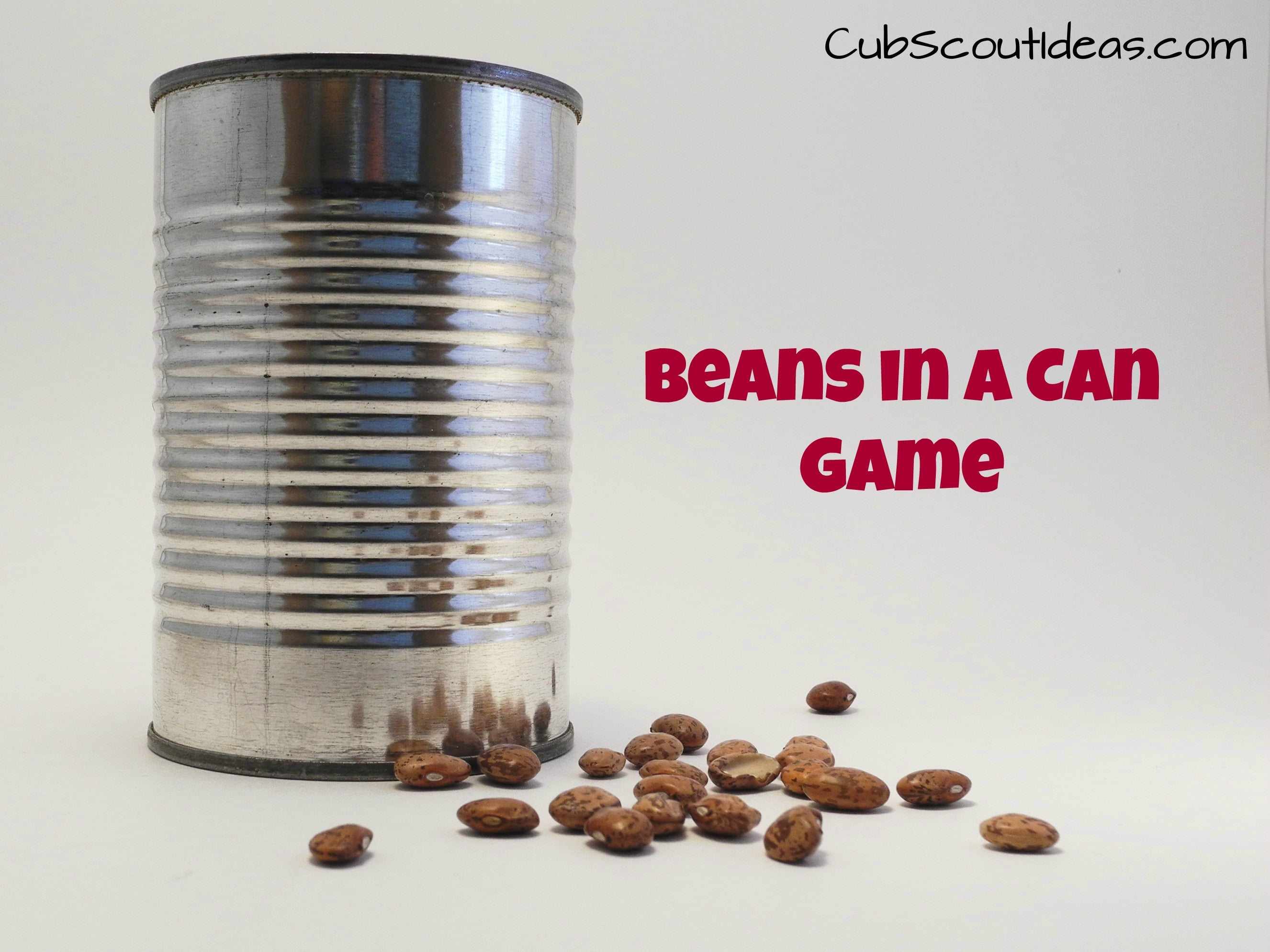 Cub Scout Gathering Activity Beans In A Can