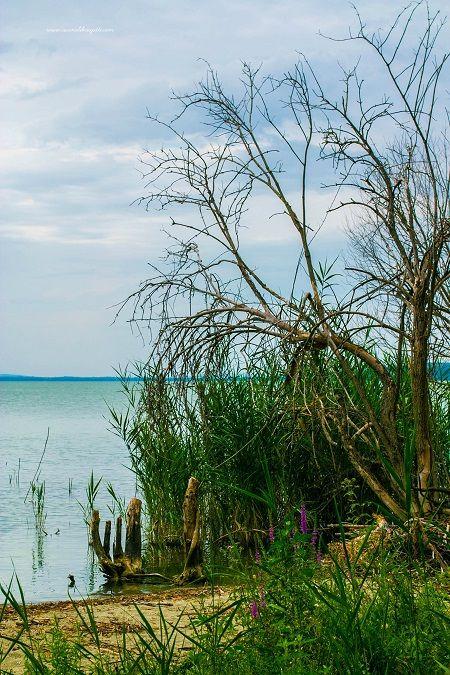 San Feliciano e le bellezze del lago Trasimeno
