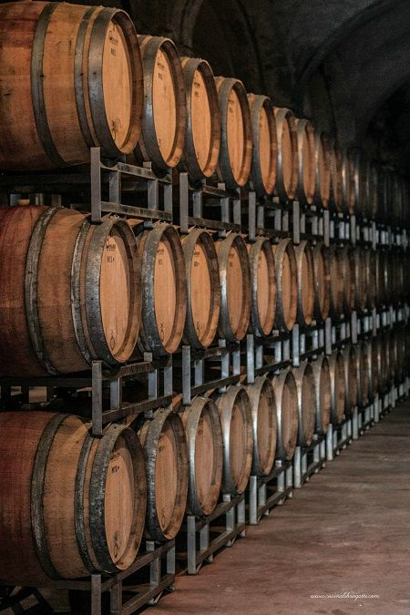 vino-barique